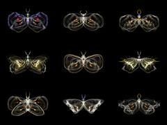 Visualization of Fractal Butterflies Stock Illustration