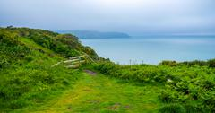 Meadow at the Coast Of Jersey Island - stock photo