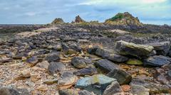 Stone Coast At Low Tide Stock Photos