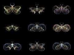 Stock Illustration of Visualization of Fractal Butterflies