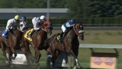 Horse Race at a Horse Racing Track Stock Footage