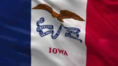 US state flag of Iowa - seamless loop Stock Footage