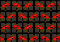 Red poppies on a black seamless background - stock illustration