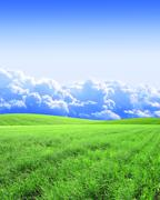 Beautiful landscape with green hills - stock illustration