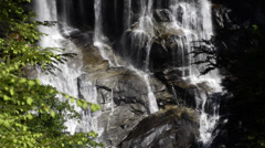 Whitewater Falls Close up with Bee in shot Stock Footage