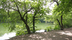 14 Gravel path by a lake Stock Footage
