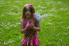 The Flowery Meadow Stock Photos
