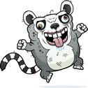 Crazy ugly lemur Stock Illustration