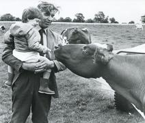 Stock Photo of Dairy farmer and son, UK, 1980s