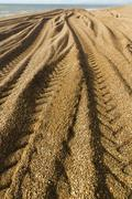 Stock Photo of caterpillar tracks from digger on stony beach