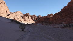 White Canyon at late afternoon, Sinai desert Stock Footage