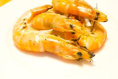 grilled shrimp on white plate - stock photo