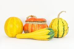 Stock Photo of Colorful gourds