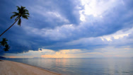 Stock Video Footage of Sandy Beach with Coconut Palms and Impressive Sky.