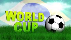 WOLRD CUP Text on Grass Stock Footage