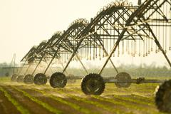 Sprinkler irrigation - stock photo