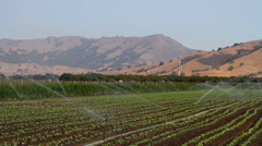 Crop Irrigation Stock Footage