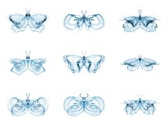 Diversity of Fractal Butterflies Stock Illustration