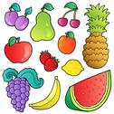 Fruits images collection Stock Illustration