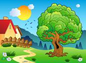 Meadow with big leafy tree Stock Illustration