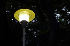 lamppost in the park - stock photo