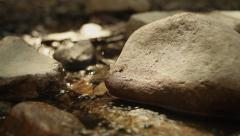 Stoney Creek Pan and Tilt for Motion Graphics Stock Footage
