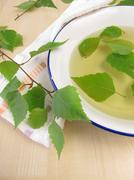 Bathing tea with birch leaves Stock Photos