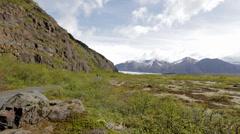 Skaftafell National Park, Iceland Stock Footage