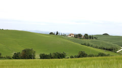 Typical landscape of Tuscany with hills and the grass waving on a wind Stock Footage