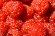 Stock Photo of raspberry