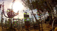Walking In Bottle Tree Ranch In Slow Motion Stock Footage