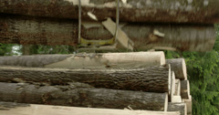 Nelwy cut logs are being transferred Stock Footage
