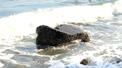 Waves on the rock Stock Footage