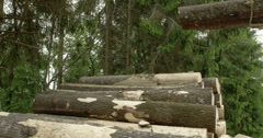 Three logs clipped and transferred by the crane Stock Footage