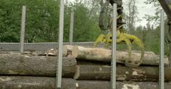 A large crane tranferring logs Stock Footage