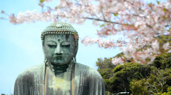 The Kamakura Buddha, medium close-up with cherry blossom branches - stock footage