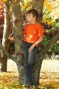 Child among colourful autumn trees and leaves Stock Photos