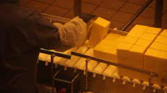Blocks of Cheddar cheese being hand sorted 1 - stock footage