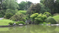 Stock Video Footage of Pond, Lake, Water, Botanical Garden