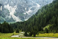Forest and river in the valley, Dolomiti - Italy Stock Photos