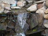 Stock Photo of manmade rock waterfall fountain pond outdoors moss