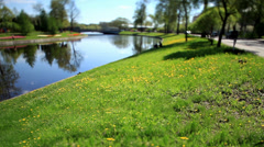 Lawn by the river Film Tilt Stock Footage