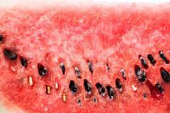 Watermelon on white background Stock Photos