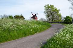 Country road surrounded by cow parsley with an old windmill ahead Stock Photos
