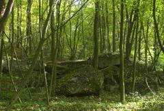 Bunker - stock photo