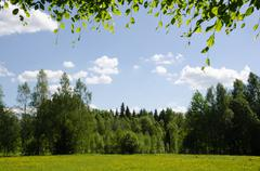 bright summer pastureland in green and yellow colours - stock photo