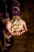 Hands holding Frankincense - stock photo