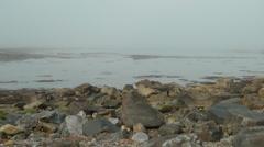 Rocky shore on misty day Stock Footage