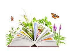 Book of nature - stock illustration