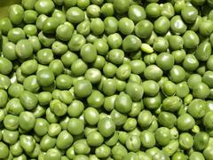 Peas picture - stock photo